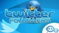 Twittera takipçi ekle