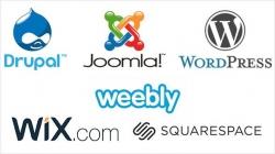 Web sitesi platformu